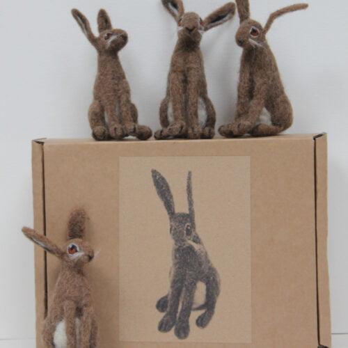 https://www.etsy.com/uk/listing/165857805/needle-felt-brown-hare-making-kit